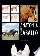 libro Anatomía Del Caballo: Guía Práctica Ilustrada