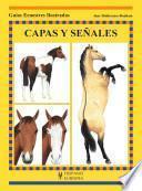 libro Capas Y Señales