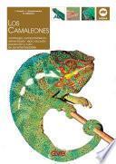 Los Camaleones
