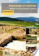 libro Arqueología En Iuliobriga