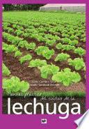 Manual Práctico Del Cultivo De La Lechuga
