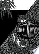 libro Gato Y Pez