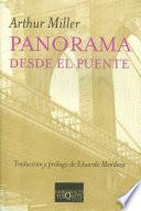 libro Panorama Desde El Puente