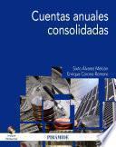 libro Cuentas Anuales Consolidadas
