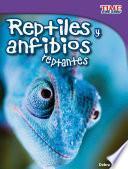 Reptiles Y Anfibios Reptantes